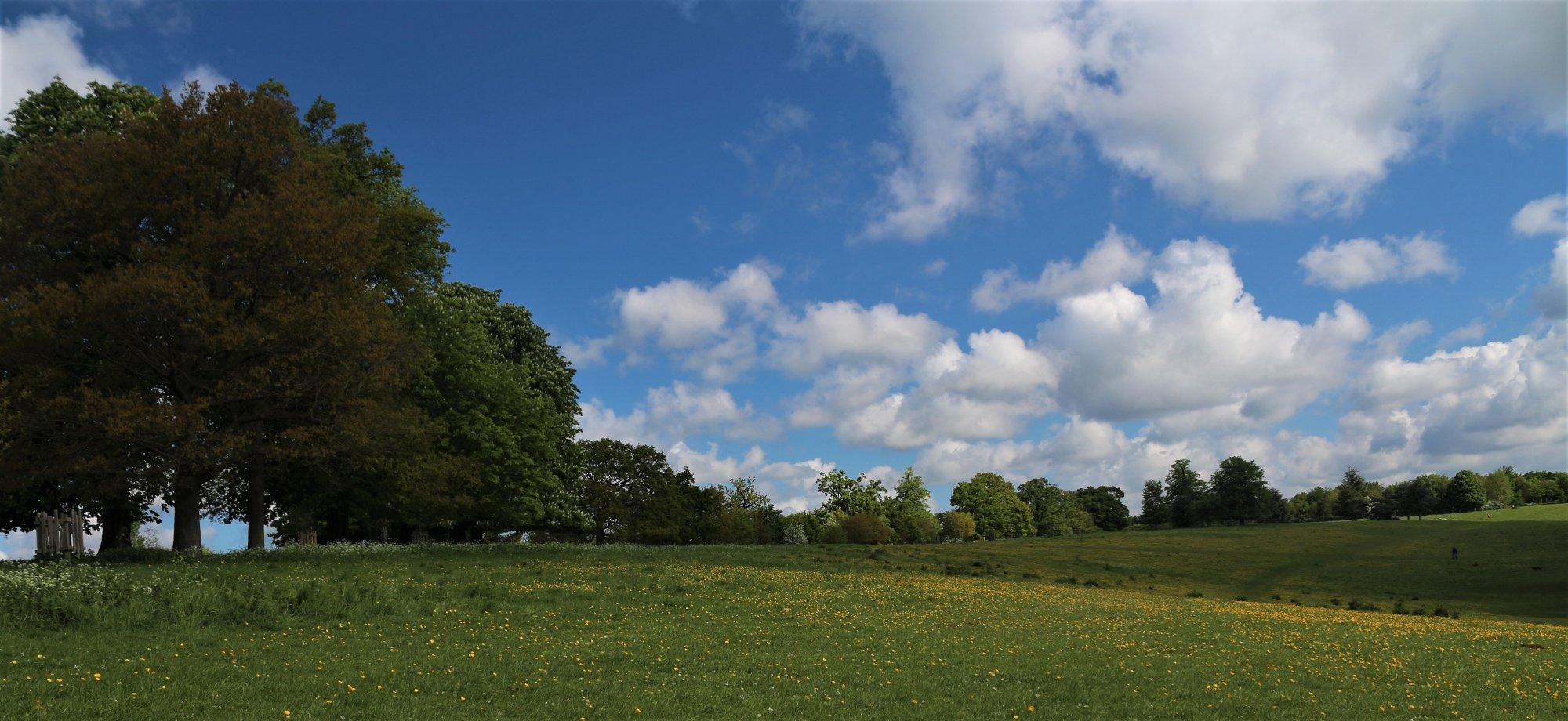 Pishoberry Park