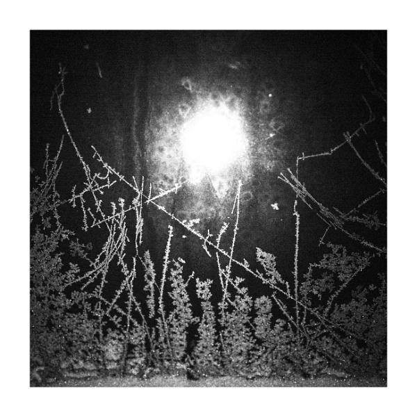 bon hiver by bliba