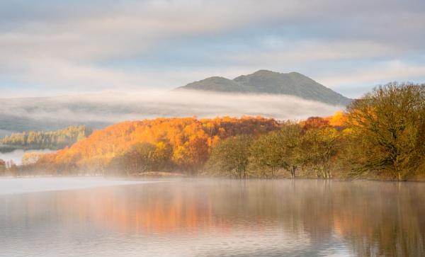 Golden Woods, Loch Venacher by PaulHolloway