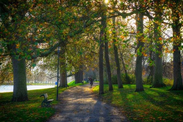 Autumn 2 in Brugge by Johan Vandenberghe