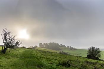 Sunlight in the fog, Penbury Knoll