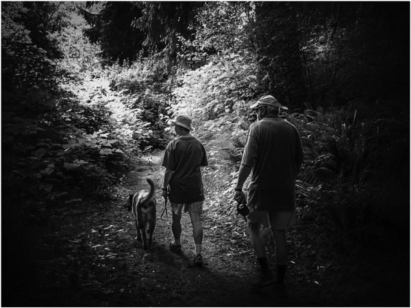 Walking With Friends by Daisymaye