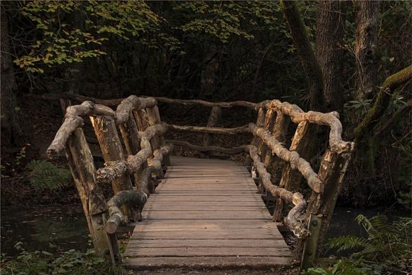 Rustic Bridge by SkySkape