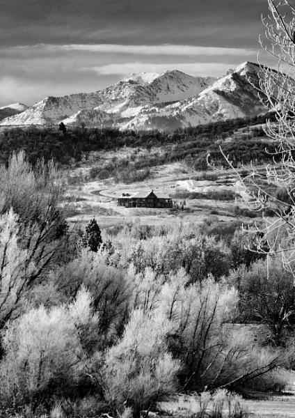Winter\'s Home by mlseawell