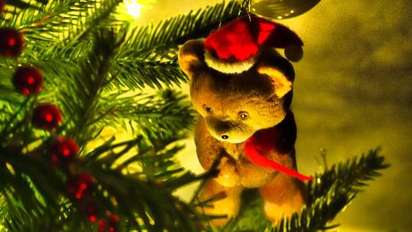 CHRISTMAS TEDDY BEAR. by kojack