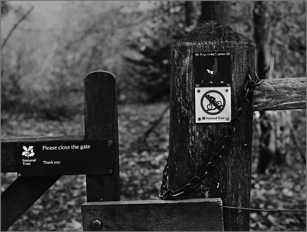 Close the Gate by AlfieK