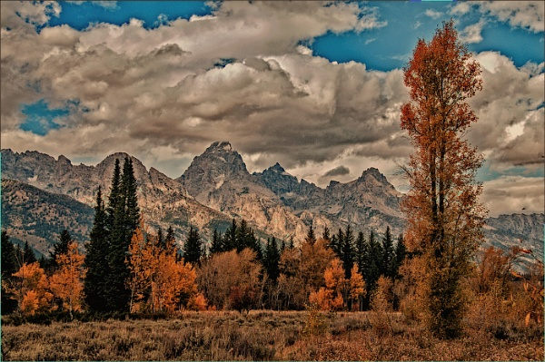 The Grand Tetons by dven