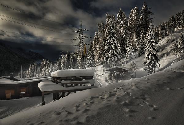 Wonder forest Sankt Anton am Arlberg by Harry2021