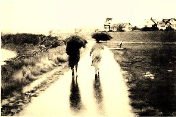 Rain on Dallas Road by judee