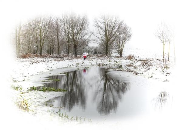 Winter walk by TomSaetan