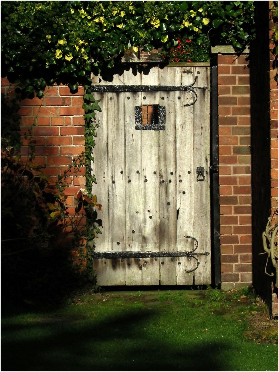 Door in the Wall