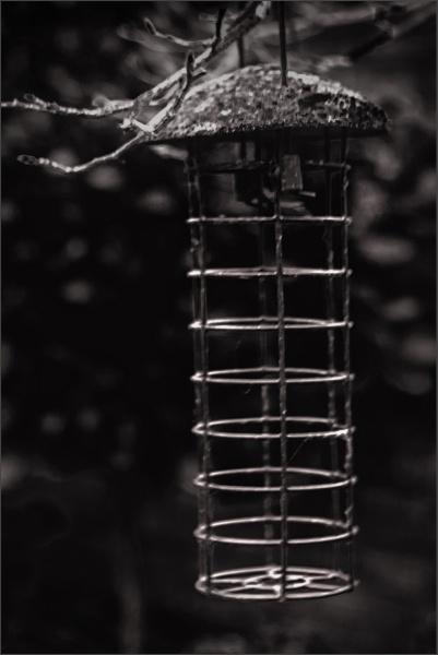 Empty Larder by AlfieK