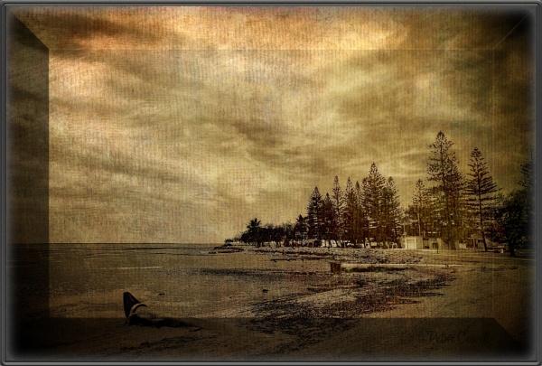 Shoreline by Peco
