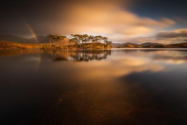Pine Island by RX70
