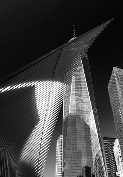 Reflecting on 9-11 by Ffynnoncadno
