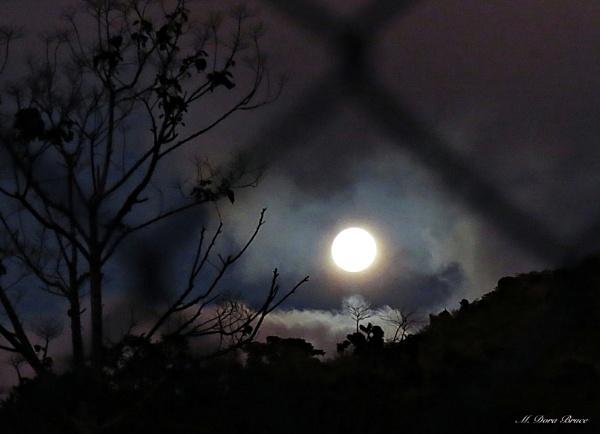 Full Moon Rising by IamDora