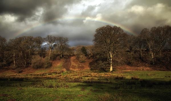 I Can See a Rainbow. by Buffalo_Tom