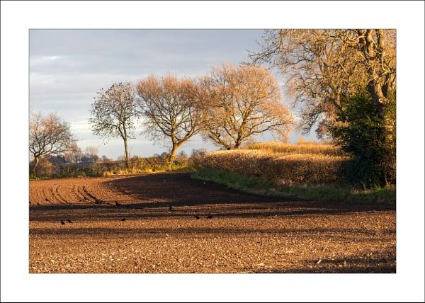 Blanchbeck Lane by Steve-T