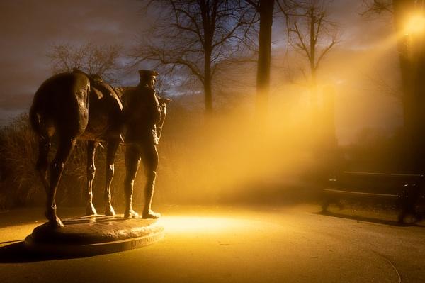 Romsey War Horse Sculpture by sneal