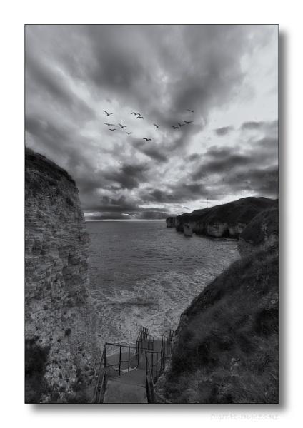 Selwicks Bay XLVIII by Alan_Baseley