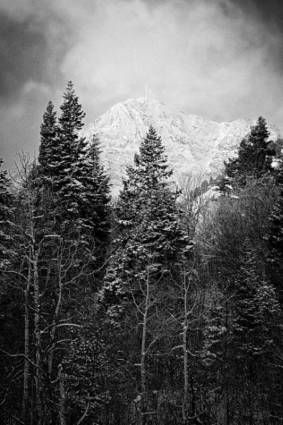 The Light of winter by mlseawell