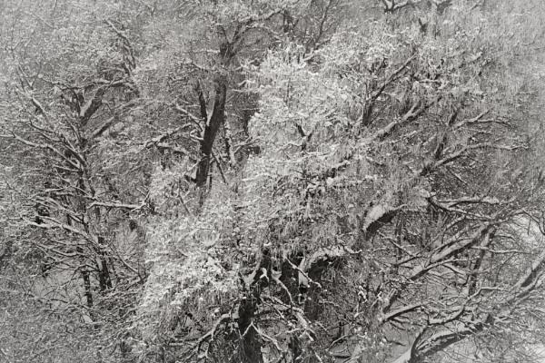 In the season by mlseawell