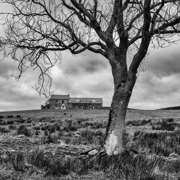Hill Farm by mbradley