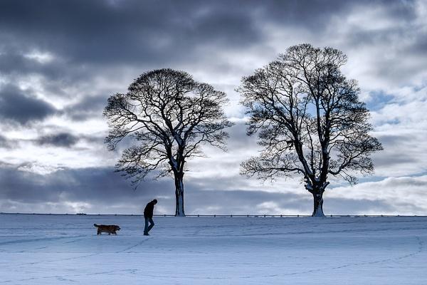 winter walk by kenwil