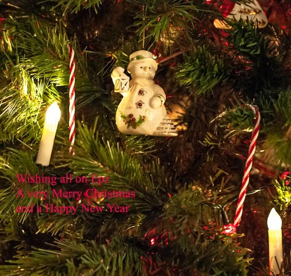 Christmas Card by Nikonuser1