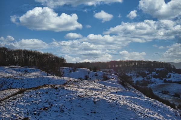 Snowy Barrowake by woodini254