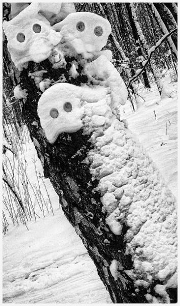 winter eyes * by leo_nid