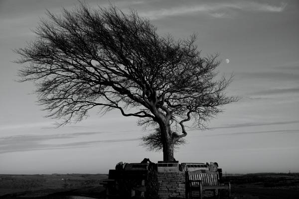 Moonshine. by Oldgeezer70