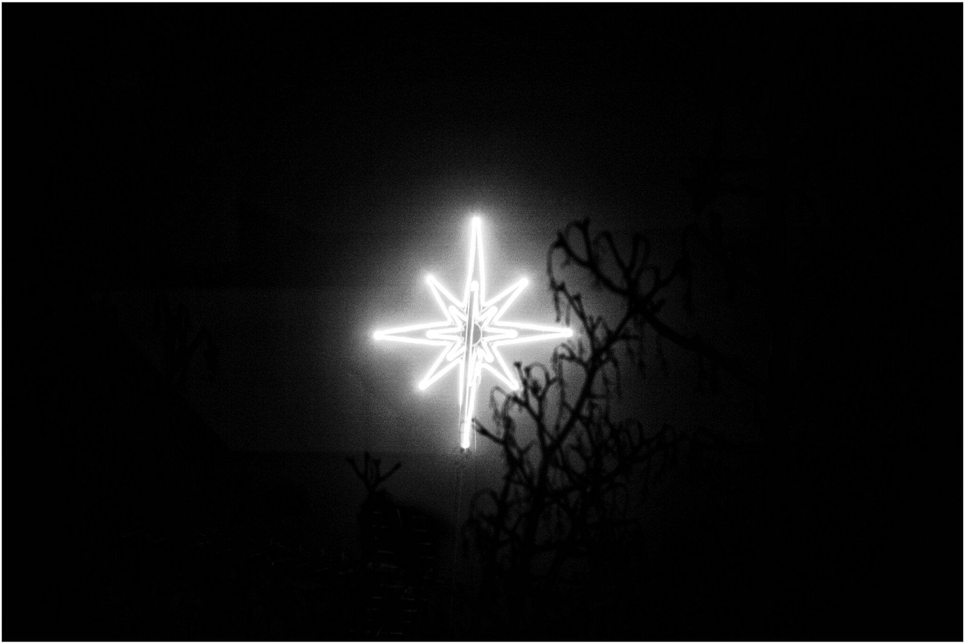 ~ Star Of Wonder ~