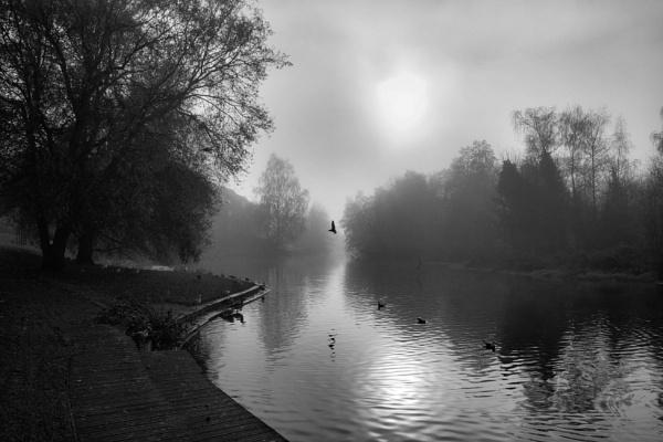 Foggy Wensum Park. by Peterdrainage