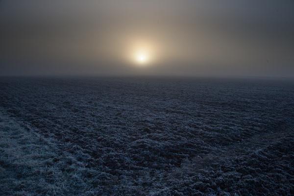Dark Dawn by Acancarter
