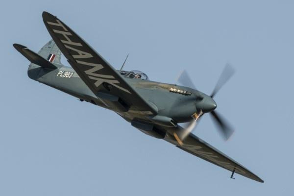 Spitfire by rspalding