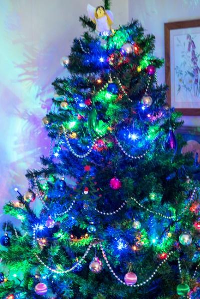 Happy Christmas 2020 by johnwnjr