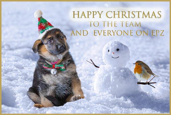 Christmas Greetings by teocali