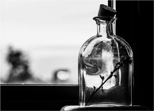 Just a Bottle by Daisymaye