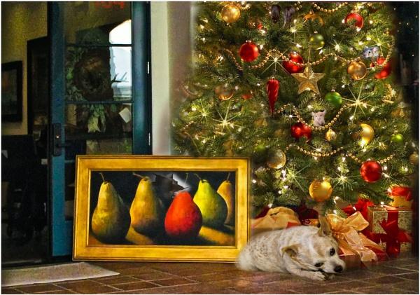 Merry Christmas Everyone by Daisymaye