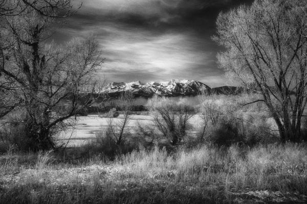 Mornings in frost by mlseawell