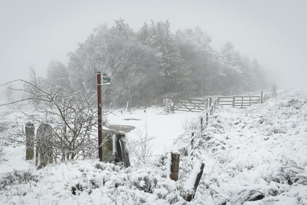 Snow Scene by Trevhas