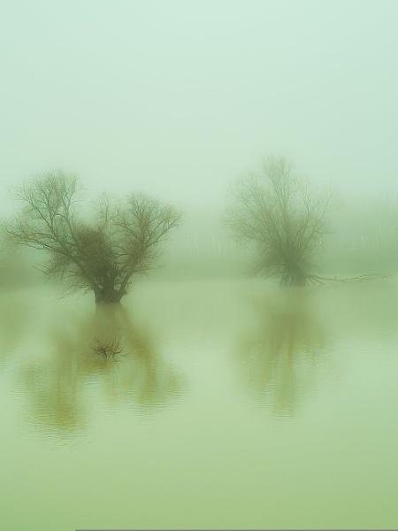 Holywell flood plain by Gary66