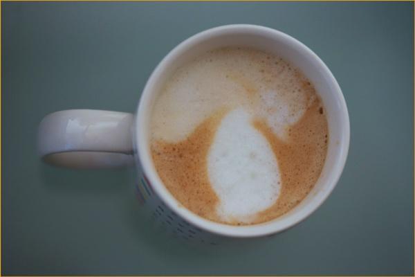 bolete mushroom coffee... by estonian