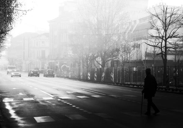 December V by MileJanjic