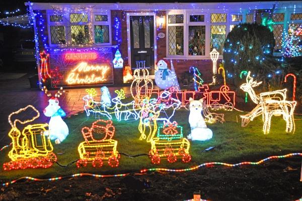 Crazy Christmas Celebrations by Dodge
