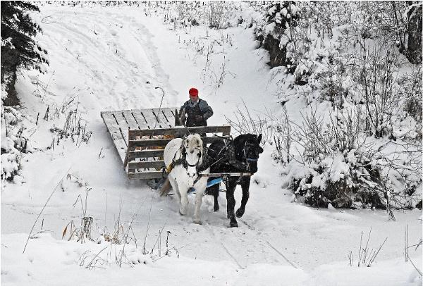 Alberta Winter 3 by MalcolmM