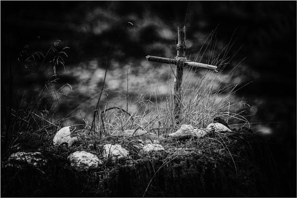 The Little Cross by Daisymaye