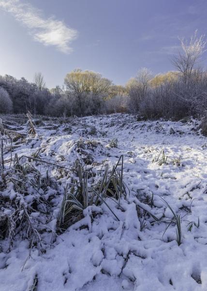 Winter scene by mommablue