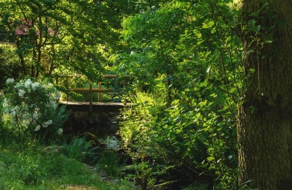 I see a bridge by BillRookery